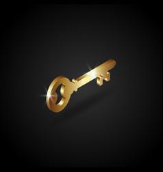 luxury golden key vector image