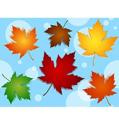 Seamless maple leaves fall colors pattern over vector