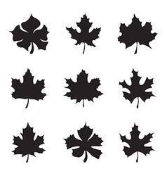 Set nine maple-leaf silhouette vector
