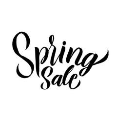 spring trendy script lettering design sale vector image