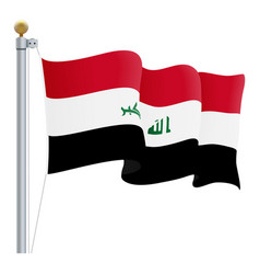 waving iraq flag isolated on a white background vector image