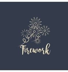 Firework company logo design on dark vector image vector image