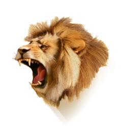 Roaring lion head vector image
