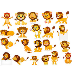 cartoon lions collection set vector image