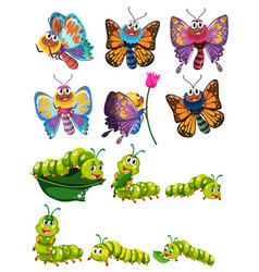 caterpillars and butterflies with colorful wings vector image