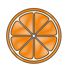 orange sliced isolated icon vector image