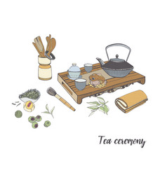 Tea ceremony with various traditional elements vector