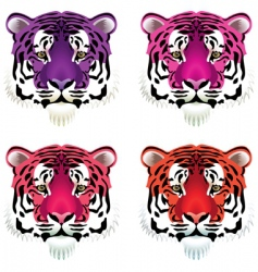 tiger heads vector image