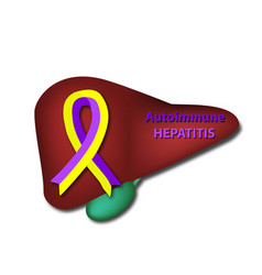 Violet yellow ribbon autoimmune hepatitis day vector