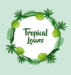 tropical leaves poster card round decoration vector image vector image