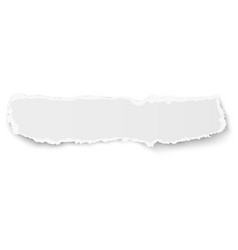 elongate paper fragment with soft shadow isolated vector image vector image