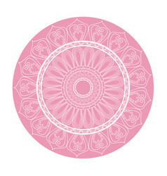 pink mandala ornament round arabic culture design vector image