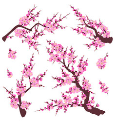 Plum blossom branches set vector