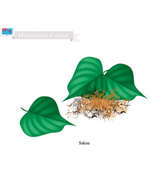 Sakau or piper methysticum with roots plant vector
