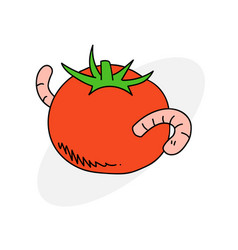 Tomato with worm vector