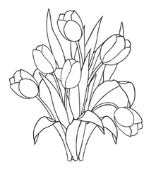 Tulips flowers ornamental black and white vector image vector image
