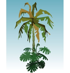 Cartoon coconut tree palm and tropical plant vector image