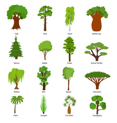 different green tree types icons set vector image vector image