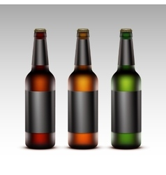 Set of Glass Bottles Dark Beer with Black labels vector image vector image