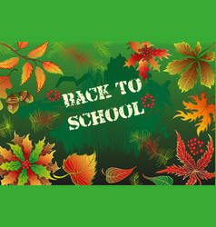 back to school background with autumn leaves vector image