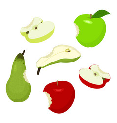 bitteb apple and pear set of red green half vector image