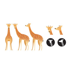 giraffe set vector image