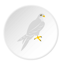 Hawk icon circle vector