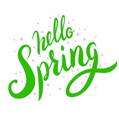 Hello spring Hand drawn lettering Spring is coming vector image
