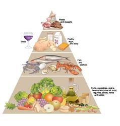 Mediterranean diet pyramid vector image