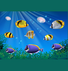 Scene with colorful fish swimming underwater vector