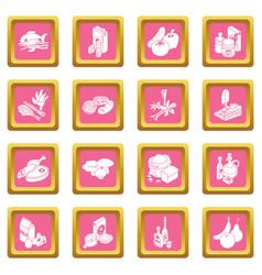 shop navigation foods icons set pink square vector image