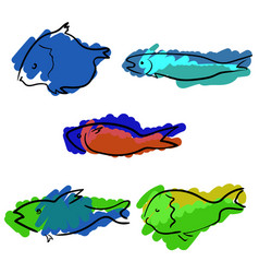 set of colored handdrawn fishes vector image vector image