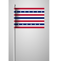 Stars and Stripes Flag vector image vector image