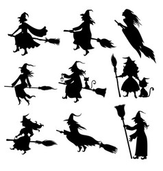halloween witch silhouette set vector image
