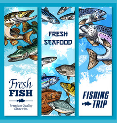 Banners of fishing trip and fish catch vector