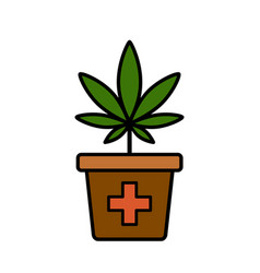 Cannabis plant in a flower pot vector
