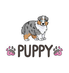 Cute cartoon australian shepherd puppy with text vector