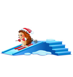 Funny hedgehog skiing on ice slides isolated on vector