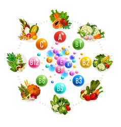Nutrition of vitamins and minerals vector