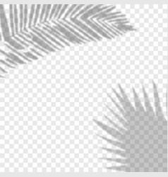 shadow background overlays vector image