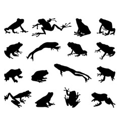 silhouettes frogs vector image