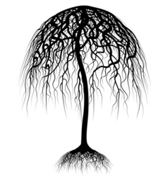 umbrella tree vector image