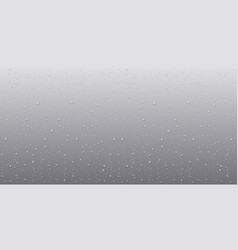 Water rain drops realistic style vector