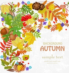 Autumn leaf pattern for your design vector image