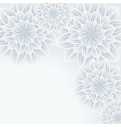 Grey background with flower chrysanthemum vector image