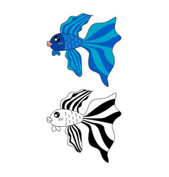siamese fighting fish vector image