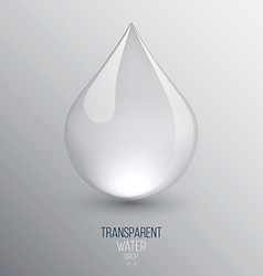 Water drop vector