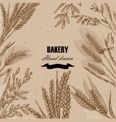 Bread design template hand drawn wheat set vector