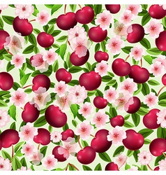 seamless texture of cherry vector image