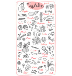 set drawings of vegetables for design menus vector image